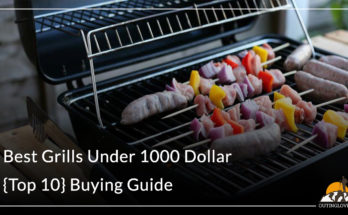 Best Grills Under 1000 Dollar - {Top 10}