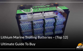 Lithium Marine Trolling Batteries