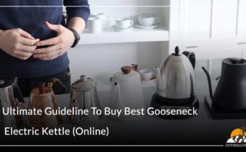 Ultimate Guideline To Buy Best Gooseneck Electric Kettle (Online)