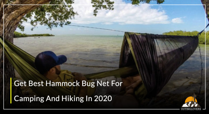 Get Best Hammock Bug